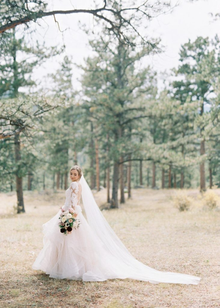 bride standing in a wintery field with a lace long sleeved wedding dress and a long veil.