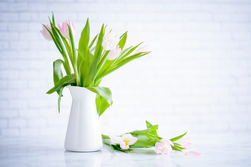 A white jug vase filled with pink tulips