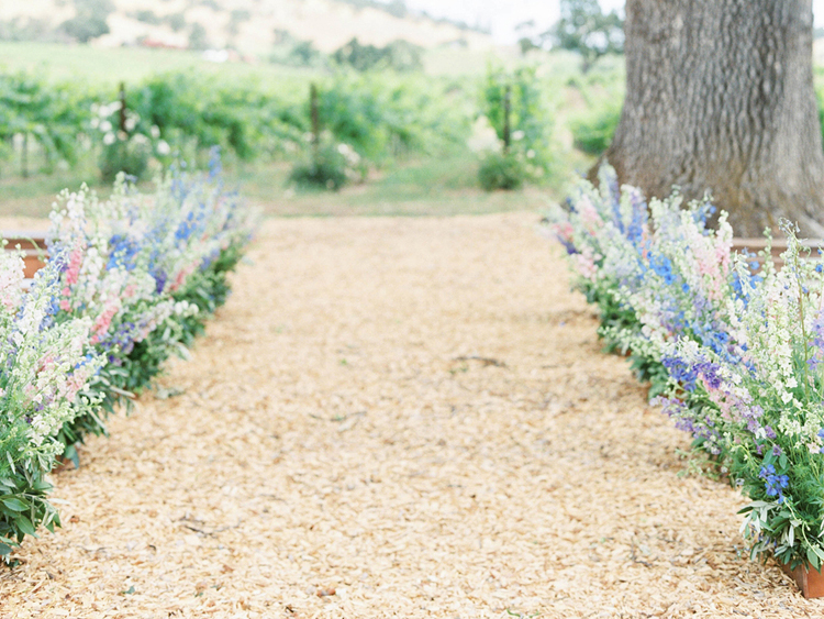 A wedding aisle lined with snap dragons